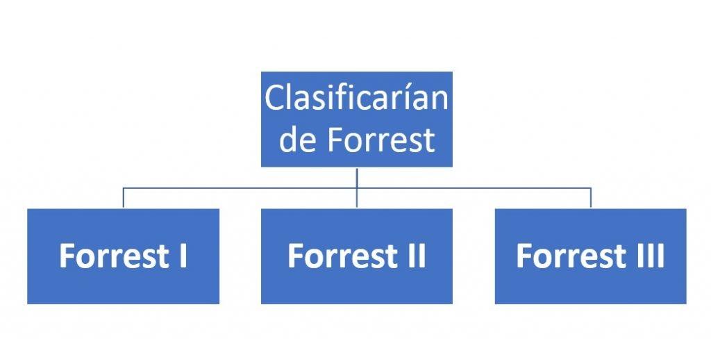 Clasificarían de Forrest