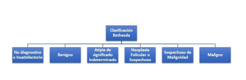 Clasificación Bethesda
