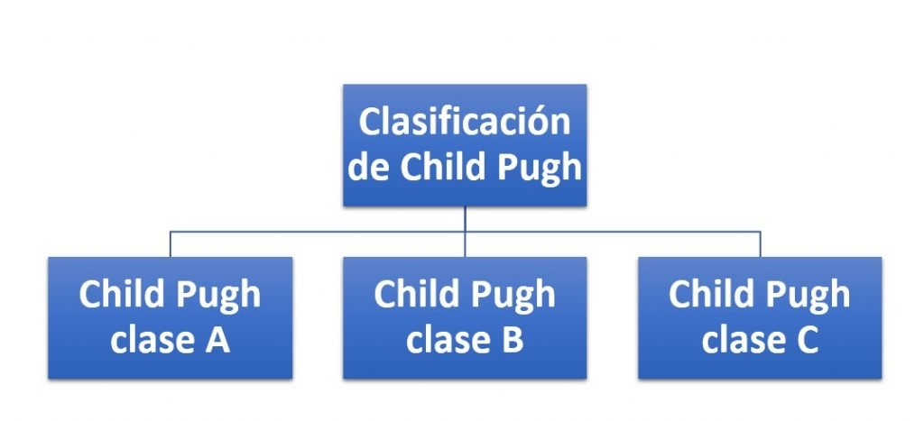 Clasificación de Child Pugh
