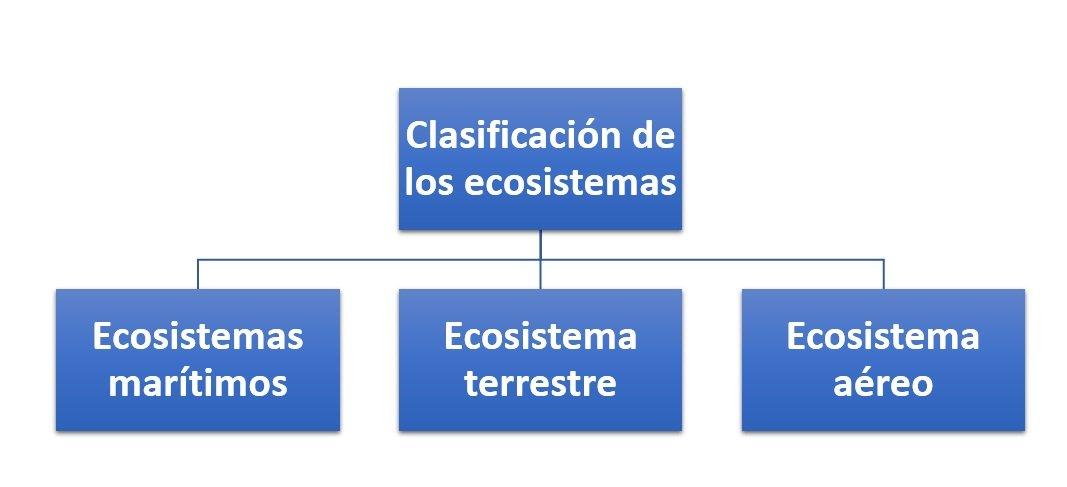 Clasificación De Los Ecosistemas Cómo Se Clasifican
