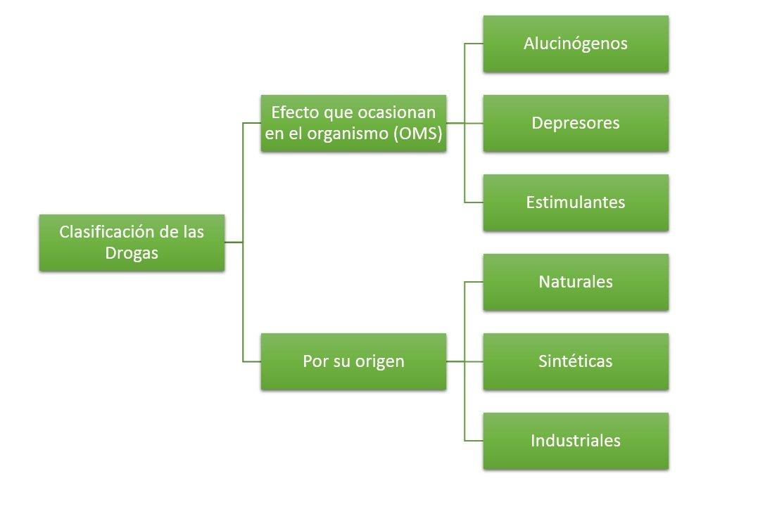 Clasificaci n de las drogas c mo se clasifican for Como se cocinan los percebes
