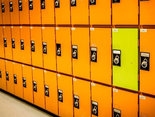 Clasificación De Los Archivos Cómo Se Clasifican