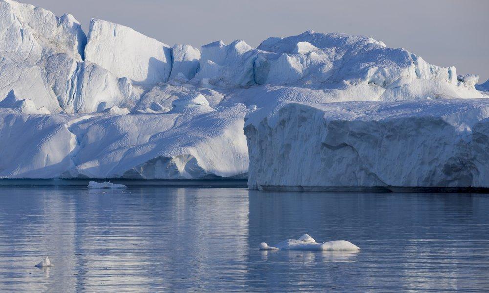ecosistemas polar ejemplos de ecosistemas