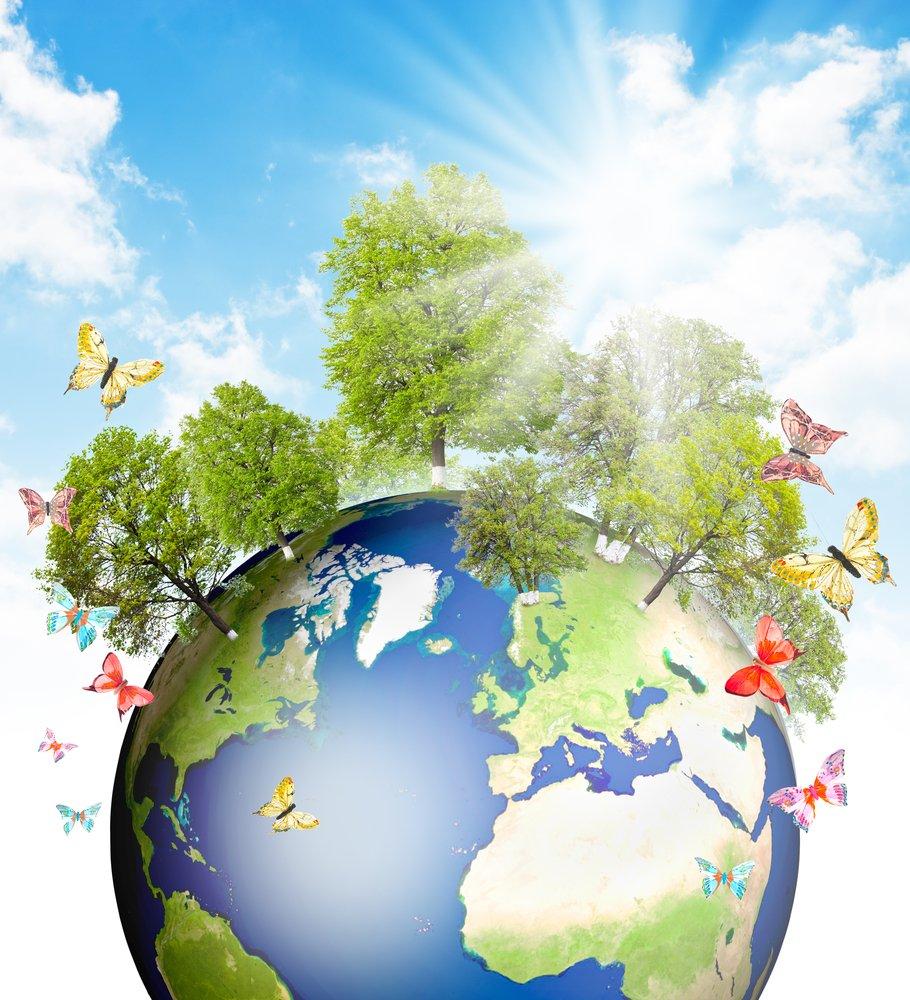 ejemplos de ecosistemas