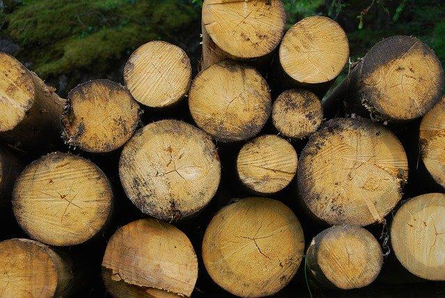 leña Ejemplos De Biomasa