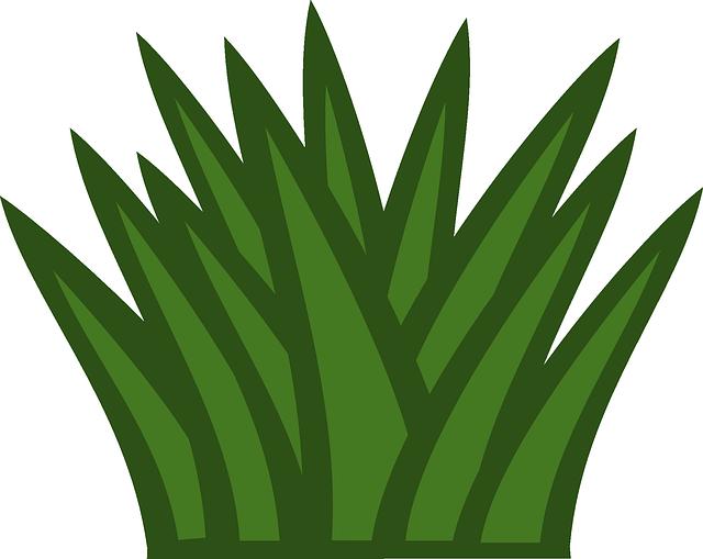 pastizales Ejemplos De Ecosistema Terrestre