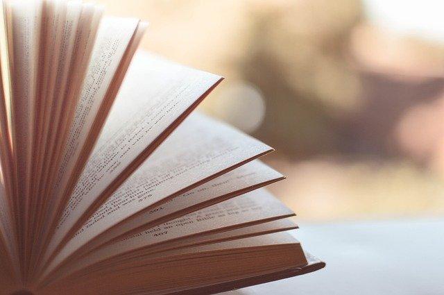 los cimientos Ejemplos De Reseñas De Libros